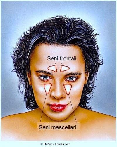 scosse alla testa cause mal di testa continuo o frequente nausea cause rimedi