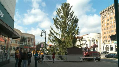 how a pennsylvania city s quot ugly quot christmas tree lives on