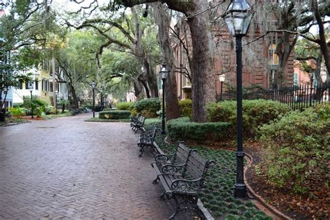 College Of Charleston Mba Ranking by College Of Charleston Admission Sat Scores Admit Rate