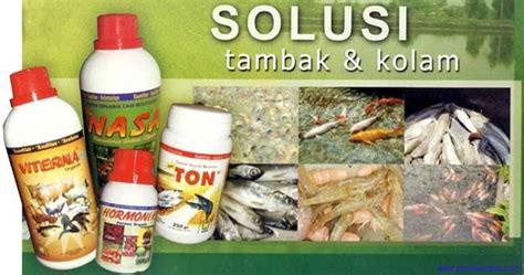 Suplemen Ikan Lele coba agar ikan cepat besar
