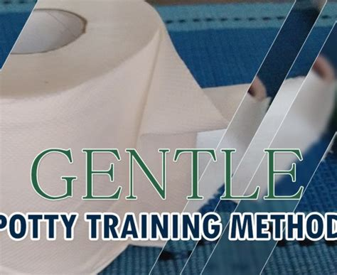 the gentle potty training potty training in two days mother o pedia