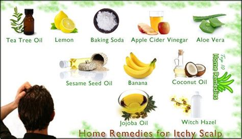 itchy remedies home remedies for itchy scalp page 2 of 2 top 10 home remedies