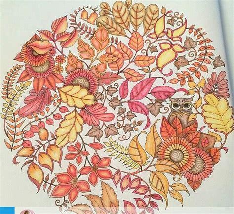 secret garden coloring book owl 21 best images about mandala owls enchanted forest