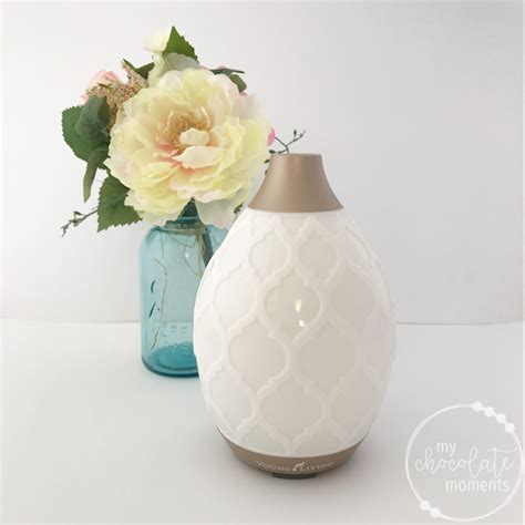 Living Desert Mist Diffuser best essential diffuser a review of six of my