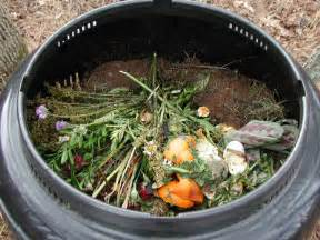 how to compost at home how composting works howstuffworks