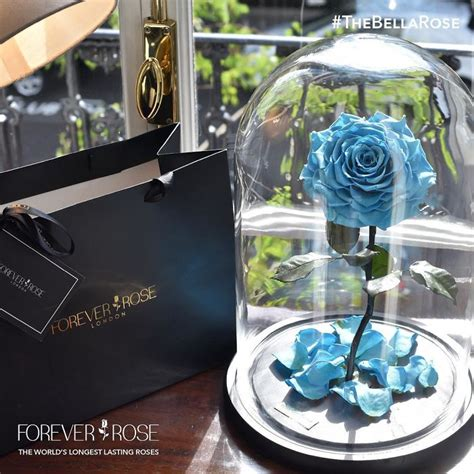 forever rose london real beauty and the beast roses exist and they ll last