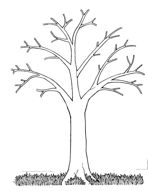 tree trunk with branches template bare tree coloring page coloring home