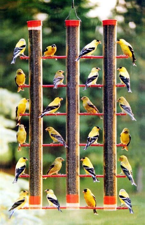 447 best bird feeders images on pinterest bird feeders