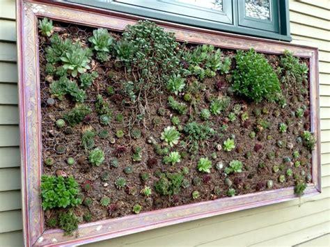 Vertikaler Garten Selber Bauen ein vertikaler garten selber bauen schritt f 252 r schritt