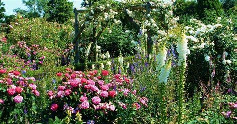 garden uk hilltop glimpses january 2016