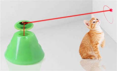 laser light for cats automated cat
