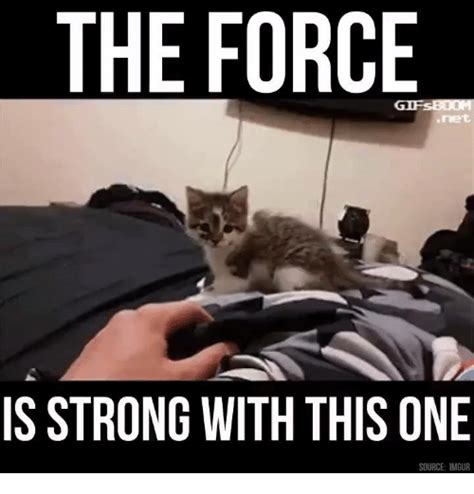 The Force Is Strong With This One Meme - 25 best memes about the force is strong with this one the force is strong with this one memes