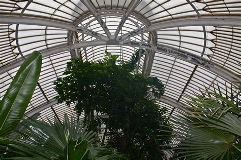 Palm House by The Palm House Kew Anthropogen