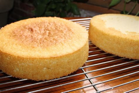 cakes recipes vanilla sponge cake recipe