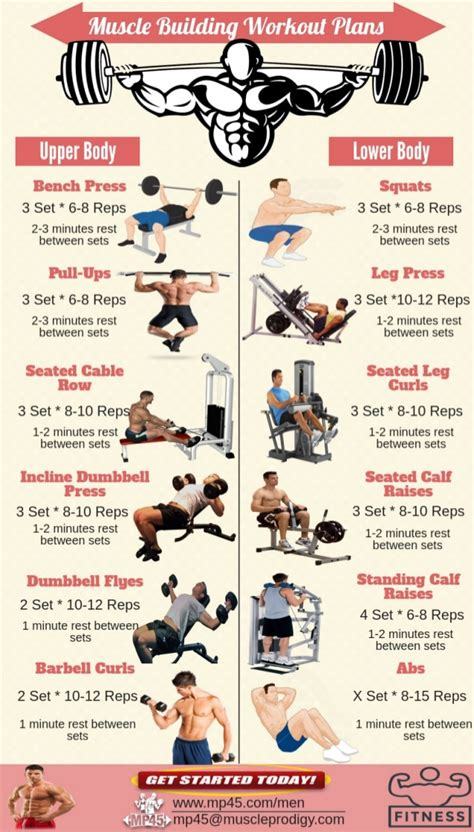 workout plans for men to build muscle at home muscle building workout routine for men
