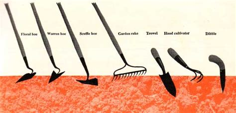 types of garden tools gardening tools for planting and cultivating