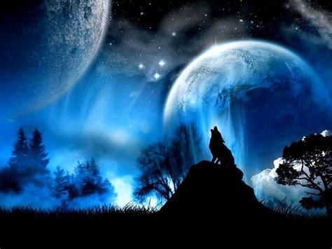 wallpaper dark moon 2999 dark forest moon widescreen desktop wallpaper