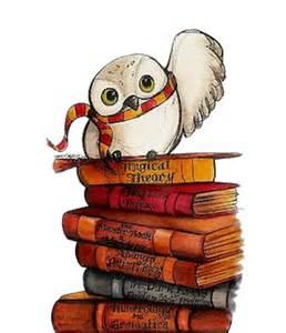 Barn Owl Beak Owl Bookmark Hp Book 1 Home Fairy
