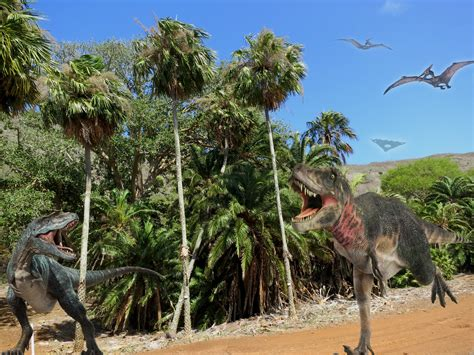 Koko Crater Botanical Garden Jurassic Park Edition Koko Crater Botanical Garden