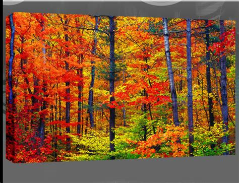 blacksmith colourful trees of fall art panels by large autumn forest painting canvas art picture 34 quot x20 quot ebay