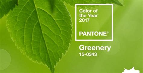 pantone of the year 2017 pantone announces 2017 color of the year the paper blog