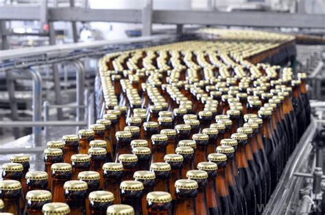 born free bottle assembly what are conveyor belts with pictures