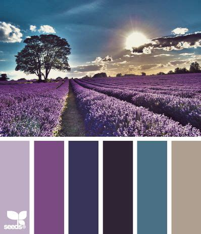 lavender color scheme color dream design inspiration and lavender fields