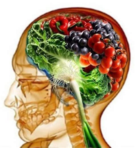 is wellness a food food for your brain healthy food how do you feed your