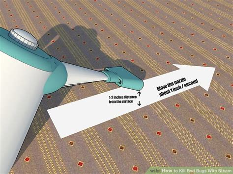 killing bed bugs with steam how to kill bed bugs with steam 9 steps with pictures wikihow