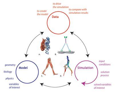 Peranan Teknologi Informasi Dan Komunikasi Di Bidang Obat Dan Pengoba godverdomme