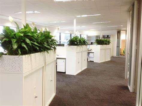 Planter Boxes ? Perfection Plant Hire