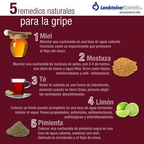 remedios caseros y naturales para la sinusitis mis remedios naturales para la sinusitis plantasparacurarcom