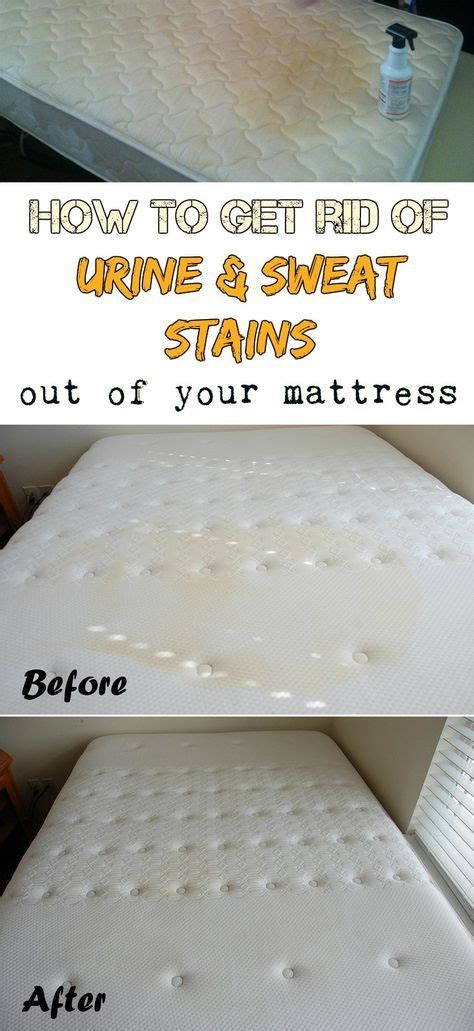 Washing Mattress Pad by 25 Best Ideas About Mattress Cleaner On