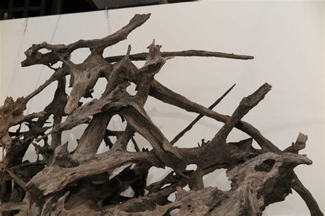 large driftwood wall sculpture at 1stdibs