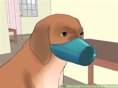 how to get a puppy from biting how to stop your from biting other 12 steps