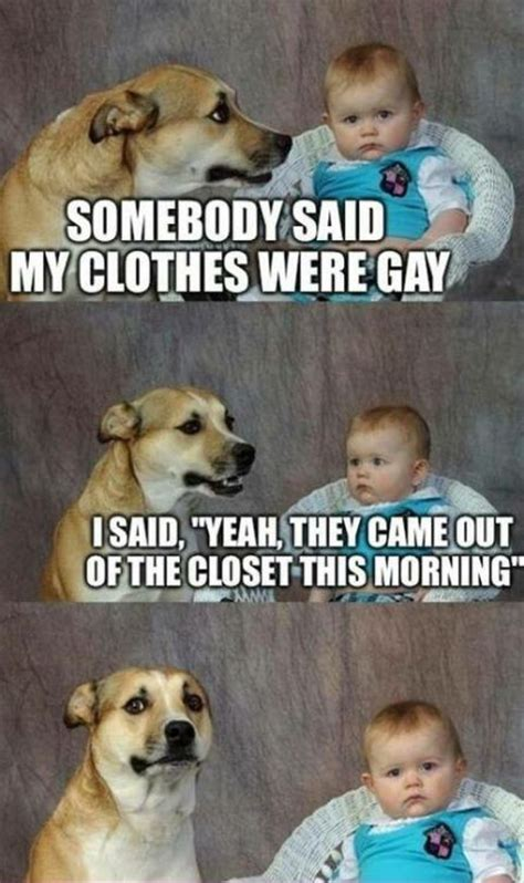 Gay Dog Meme - 17 best images about lame jokes on pinterest jokes