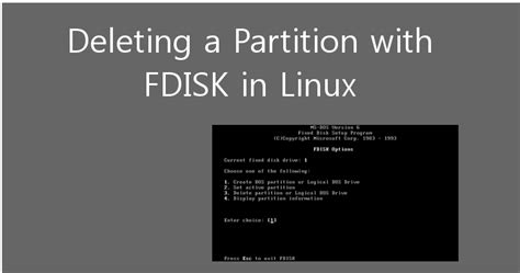 format fat32 linux fdisk how to delete a partition with fdisk command on linux