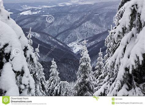 ms all del invierno bosque nevado y de la visi 243 n el paisaje del invierno m 225 s all 225 de rumania