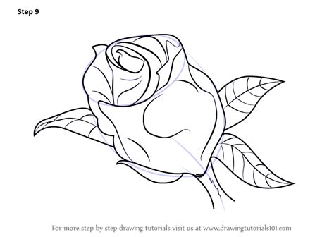 learn how to draw a beautiful rose rose step by step