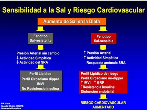 sal para hipertensos dieta pobre en sal para hipertensos