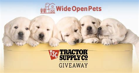 Tractor Supply Gift Card - what pet do you wish you had take our poll and win a tractor supply gift card