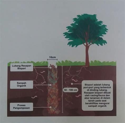 cara membuat seblak dirumah cara membuat biopori di halaman rumah 1001 cara menanam