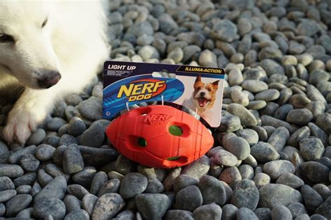nerf light up football nerf toys for dogs polar the curious