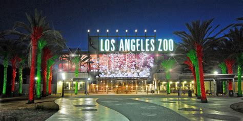 Los Angeles Zoo And Botanical Gardens Los Angeles Zoo And Discount Tickets To La Zoo Lights Socal Field Trips