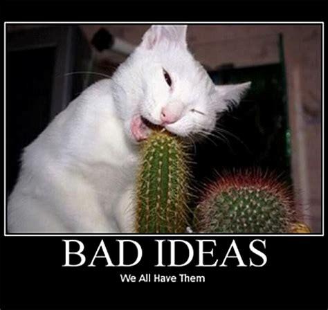 Good Ideas For Memes - making trim lessons learned sarah s big idea