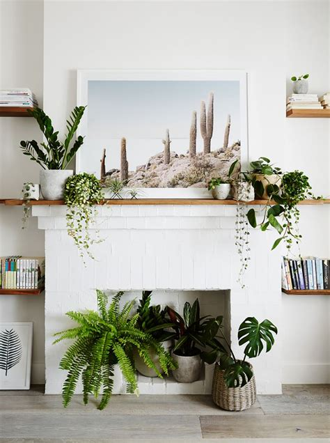 keeping cats from mantel decorations and trees best 25 empty fireplace ideas ideas on logs in fireplace fireplace and