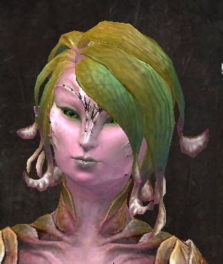 gw2 new sylvari hairstyles gw2 entanglement new hairstyles in makeover kit dulfy