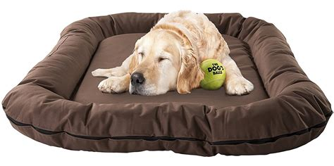 best dog beds review best dog beds review 28 images top best memory foam