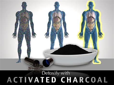 Mercury Detox Charcoal by 3 Box Sorbex Ultra 12 Capsules X 330mg Detox Sorbent