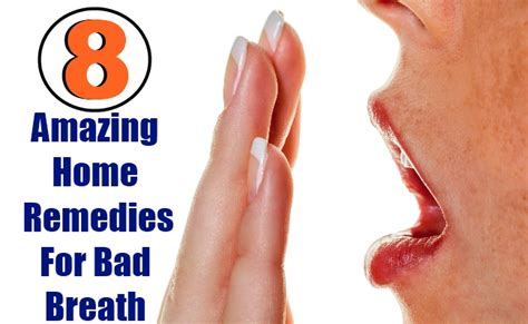 8 amazing home remedies for bad breath search home remedy